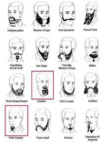 Beardchart